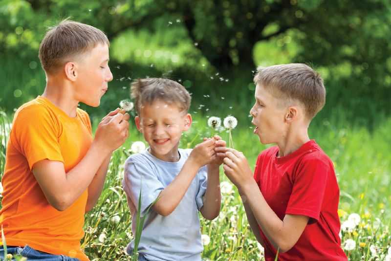 Three young brothers blowing dandelion flowers at each other