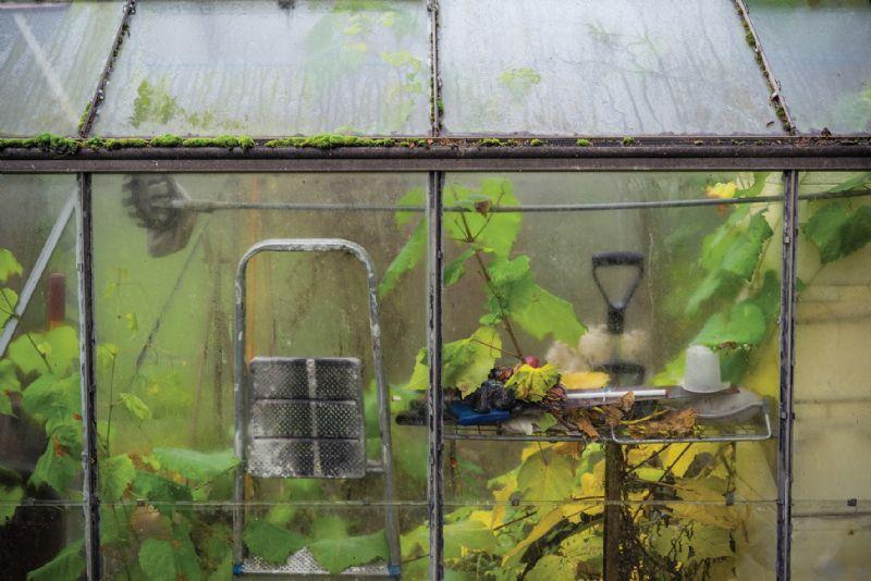 Dirty greenhouse autumn winter garden